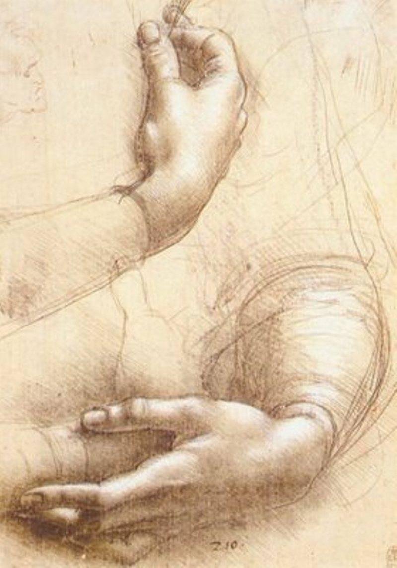 Рисунки эрогированного члена 24 фотография